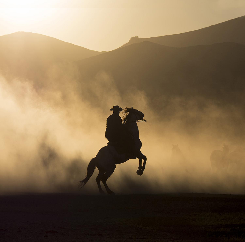 Yilki horseman in silhouette