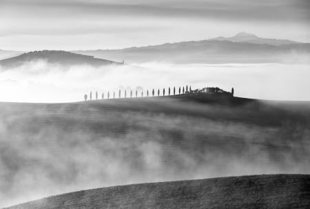 A backlit house and cypress trees in the mist, Val d'Orcia, Tuscany, Italy