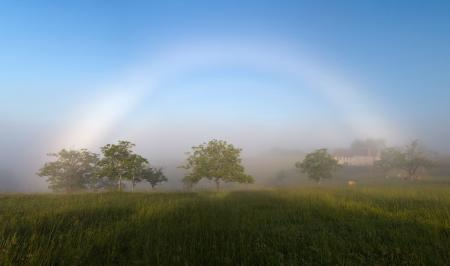 A fogbow, Curemonte, France