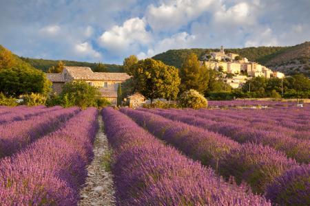 Banon, Provence