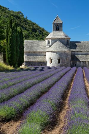 Abbaie de Senanque, Provence, France