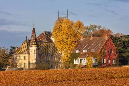 Aloxe Corton, Chateau Corton-Andre, Burgundy