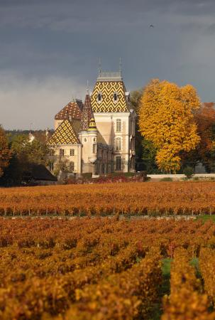 Chateau Corton-Andre in the autumn, Beaune, Burgundy, France