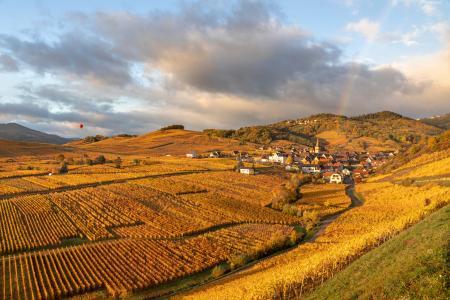 Ammerschwihr & vineyards in the autumn with a rainbow, Alsace, France