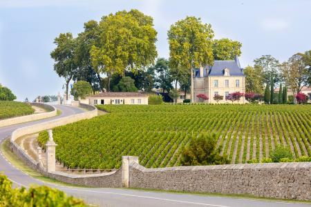 Chateau Pichon Longueville Comtesse de Lalande, Bordeaux region